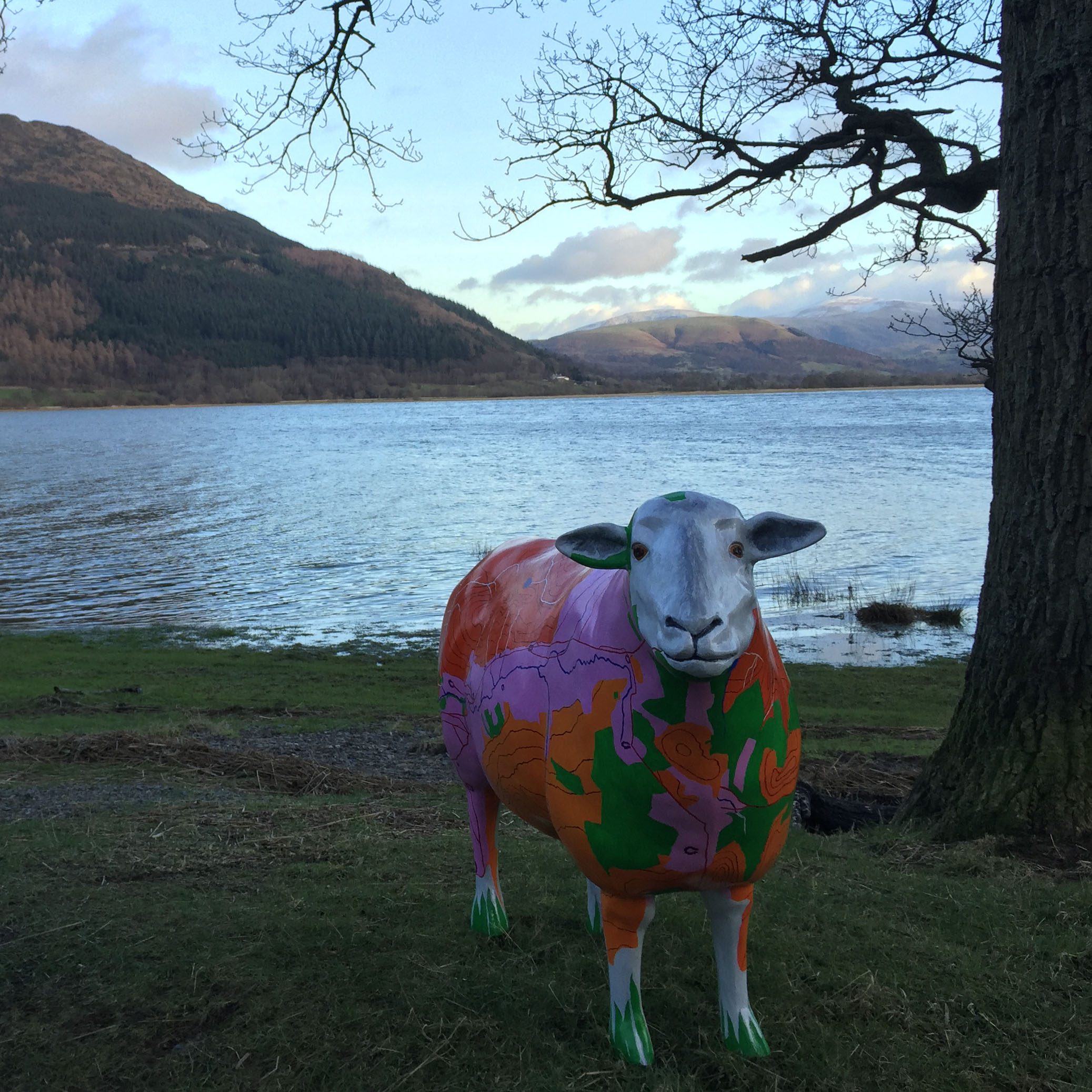 Image for article Go Herdwick with our Fell Top Georgy