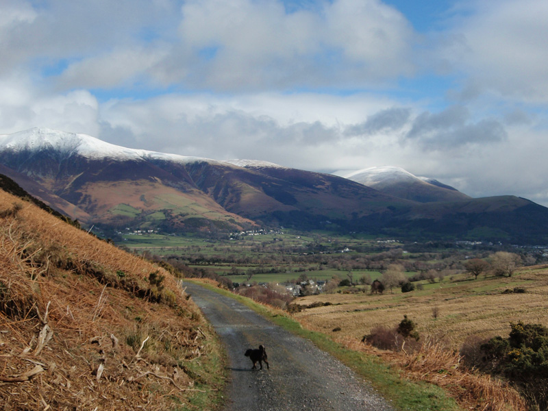 Image for article Looking-back-towards-Skiddaw-and-Latrigg.jpg